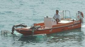 Barco pelicano