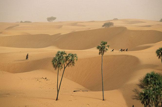 2-dunes-desert-655