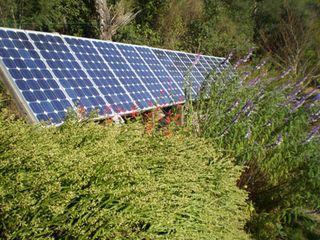 Placas-solares-web1[1]