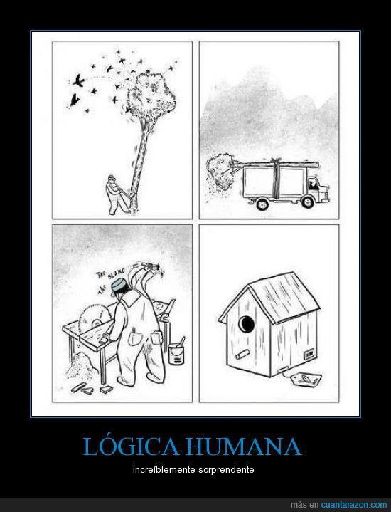 CIUDAD. Lógica humana. Casa para aves