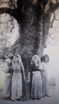 Chipko Movimiento