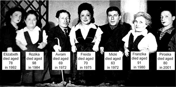 Ovitzfamily
