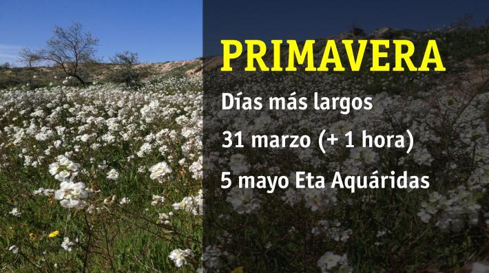 PRIMAVERA2
