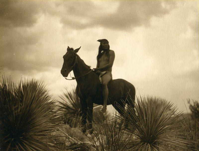 The Scout (Edward S. Curtis)