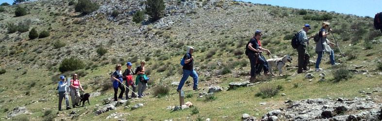 Tramo de media ladera ya llegando a Calatañazor