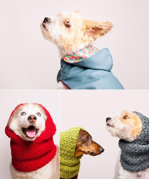 Gorro tejido para perro - Imagui