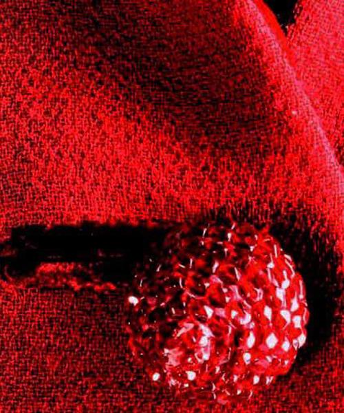 Detalle-de-una-botonadura-de-un-vestido-de-Pertegaz