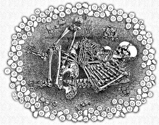 Echinoid-burial