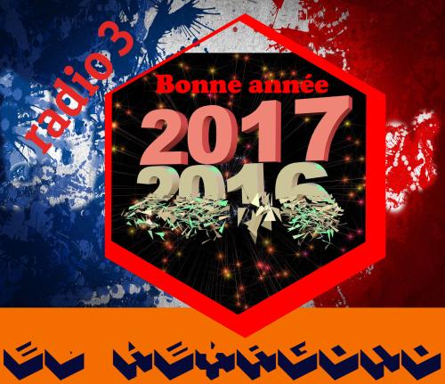 Bonne-annee-2017-avec-feu-dartificeOK