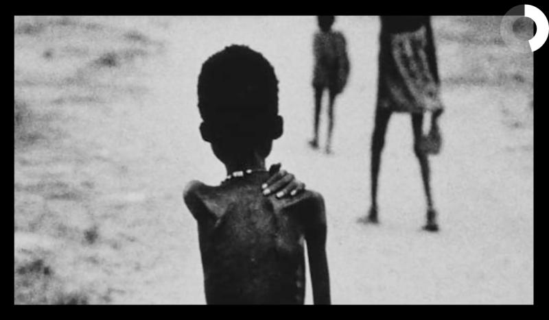 Proyecto hambre 6