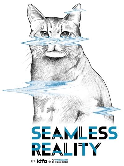 Seamless Reality
