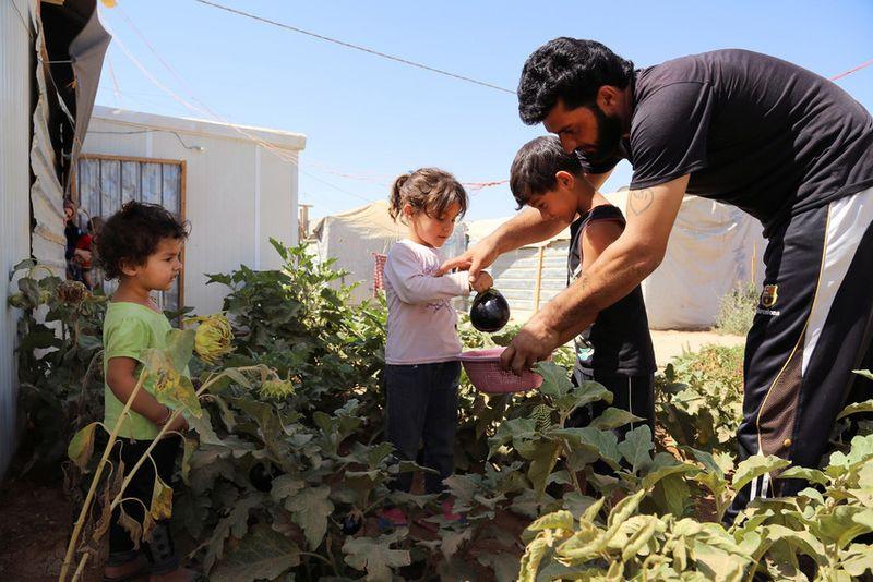 Save The children refugiados 1