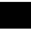 Logo-begira-negro