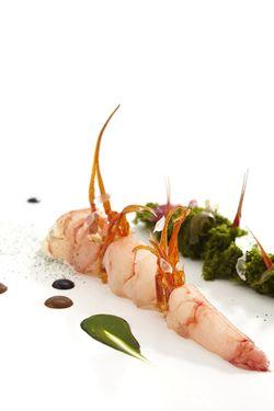 Gamba marinada en  vinagre de arroz con velouté de algas y pan de fitoplancton