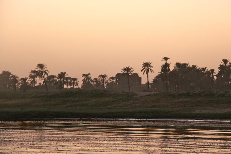Nilo dorado