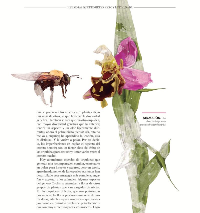 Botanica Insólita