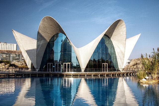 640px-L'Oceanografic_(Valencia _Spain)_01