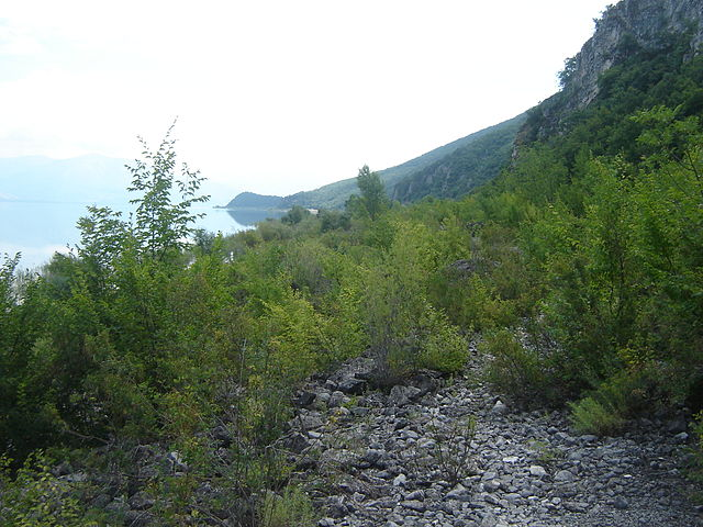 Lake_Prespa_(southern_shoreline)_Foto Wikipedia Bomac