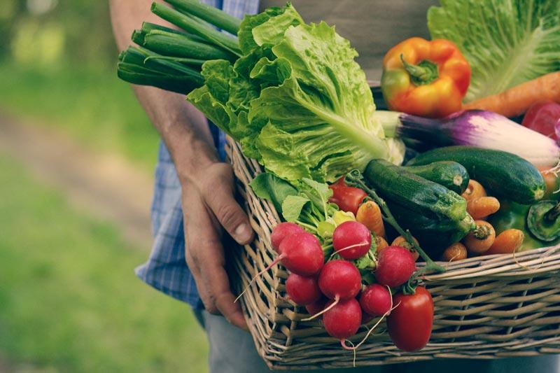 Por-que-hay-que-comer-verduras