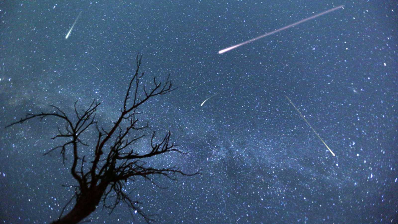 Descarga Perseidas Foto Thinkstock