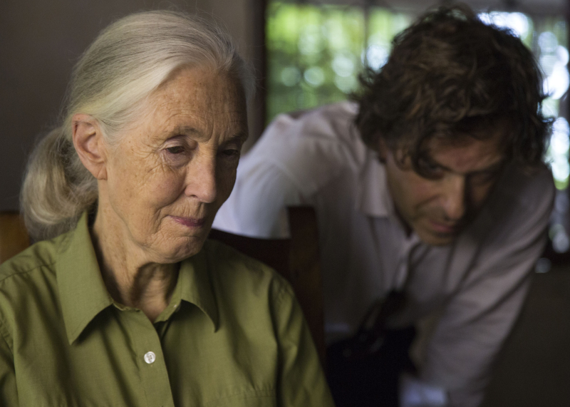 Jane-brett-morgen-jane-goodall-01