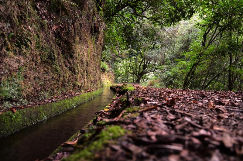 Walking tour_Levada d oRei_Bibeiro Bonito