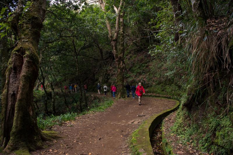 Walking Tour _Levada dos Balcoes(1)