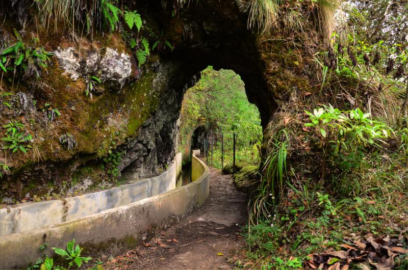 Walking tour_Levada do Furado(4)