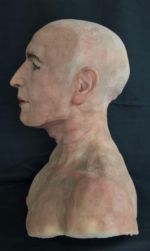 Perfil del busto de Nespamedu