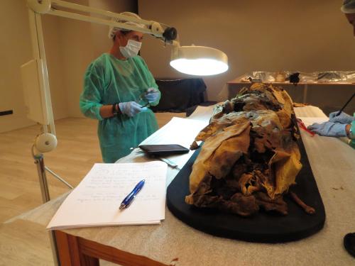 Estudio de una momia canaria