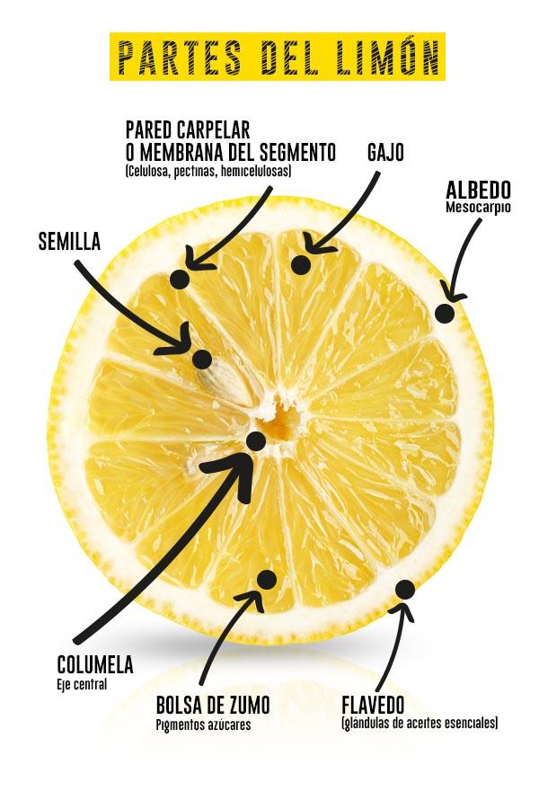 Lemon_sectors_es